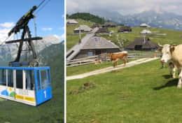 A short gondola ride to the mountain pastures of Velika Planina.