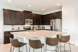 Exclusive Private Villas, 5 Bedroom Luxury Home In Florida (ENC213) - Kitchen2