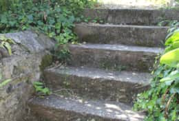 Steps up to the rear garden