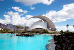 You can admire the beautiful project of Santiago Calatrava, Auditorium of Tenerife