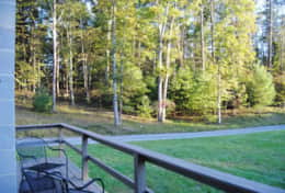 Wooded area from private deck