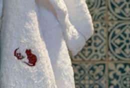 Bathrobe Logo